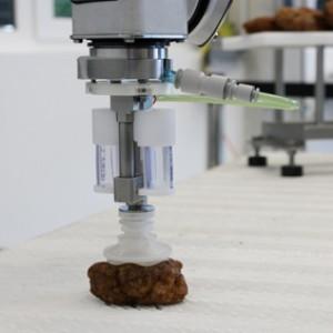 BIQ Business- und Innovationspark Quakenbrück Lebensmittelproduktion Roboter